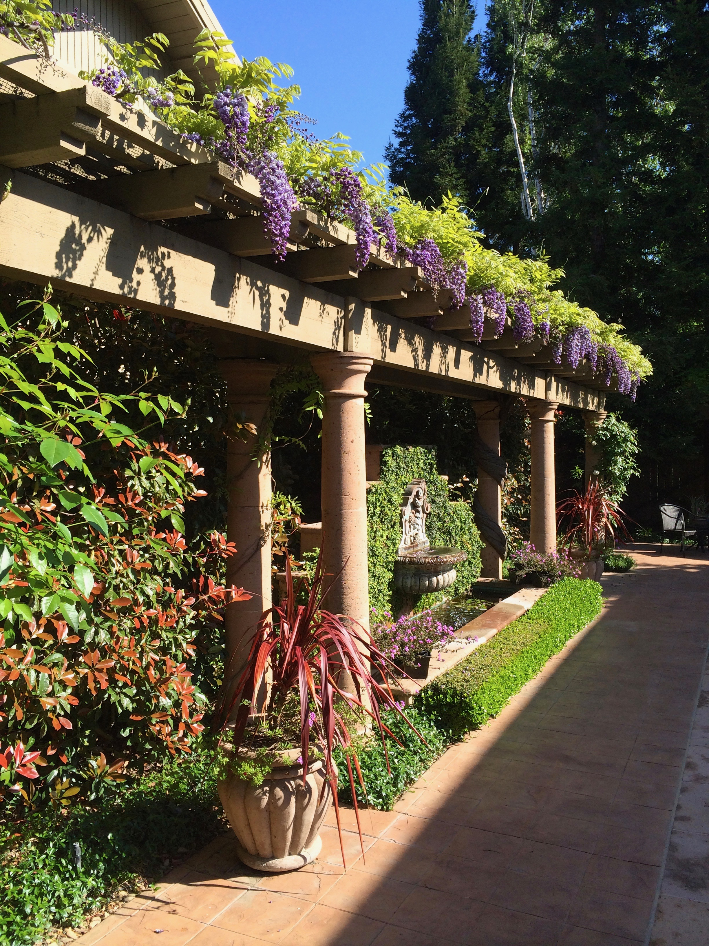 Dramatic Wisteria Arbor And Wall Fountain Michael Glassman